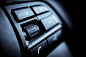 Car voice controls